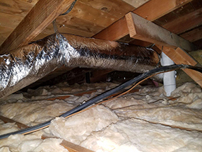 Attic Cleaning and Insulation in California
